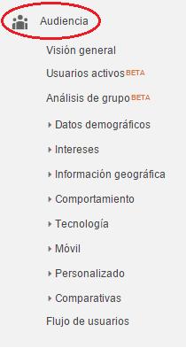 Análisis del informe de audiencia de una página web. Análisis de los datos relevantes de los usuarios. Marketing online Mallorca